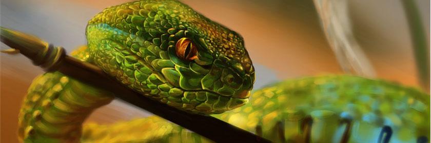 Дублирование змеиного пресмыкания с помощью математических формул